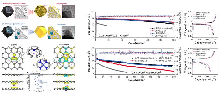 개발된 3차원 탄소 집전체를 활용 안정된 리튬금속 저장 매커니즘 및 셀 성능