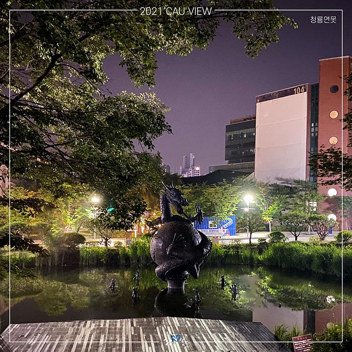 서울캠퍼스 청룡연못 야경